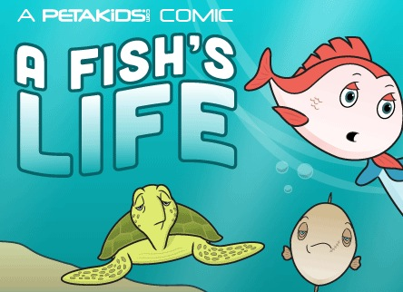 Free Peta Kids Fish Stickers