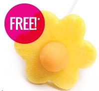 Free Pineapple Edible Pop at Edible Arrangements