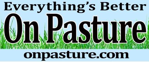 Free on Pasture Bumper Sticker