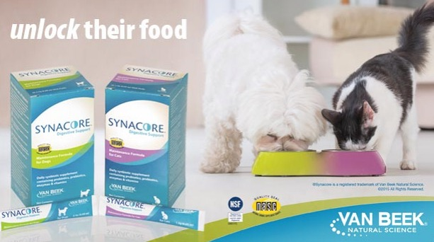 Free Synacore Probiotics Sample for Dogs or Cats