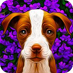 Free Dogistry App for Android
