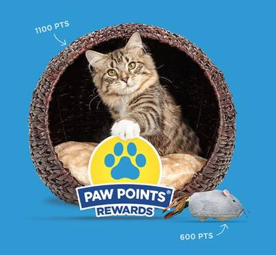 Pet Freebies Free Stuff For Pets Free Sample For Dogs